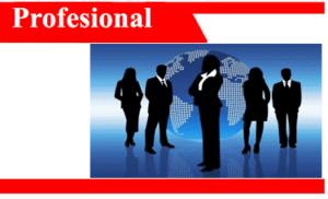 Profesional-adalah-karakteristik-faktor-sikap-contoh-pelayanan